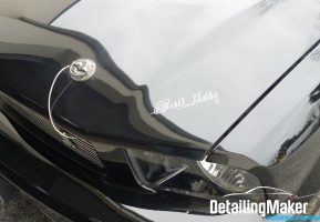Detailing Mustang Shelby_03