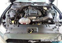 Detailing Mustang_53